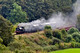 _DSC1218 Making a fair bit of clag for a small loco as she starts her climb up to Arley 10.39am 26.9.09